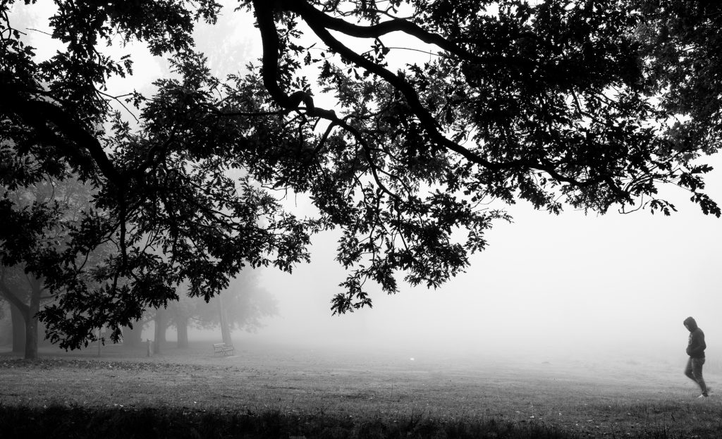 Country, Landscape, Long Exposure, Tree, Industry, Black and White, Fine Art, Artist, Photography, Print, Sale,